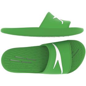 speedo Slides Heren, groen
